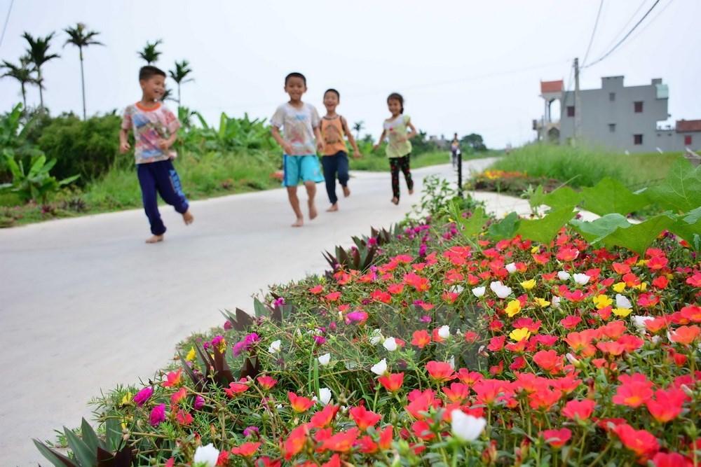 Màu hoa Mười Giờ làm cho không gian xanh không còn đơn điệu