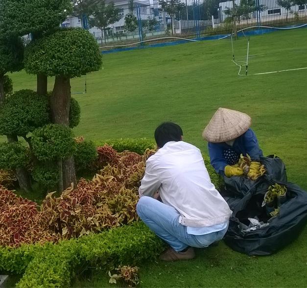 Những công nhân của Ngoại Thất Xanh đang miệt mài với công trình thiết kế thi công mảng xanh.