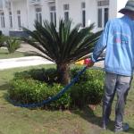 Dịch vụ chăm sóc sân vườn Ngoại Thất Xanh