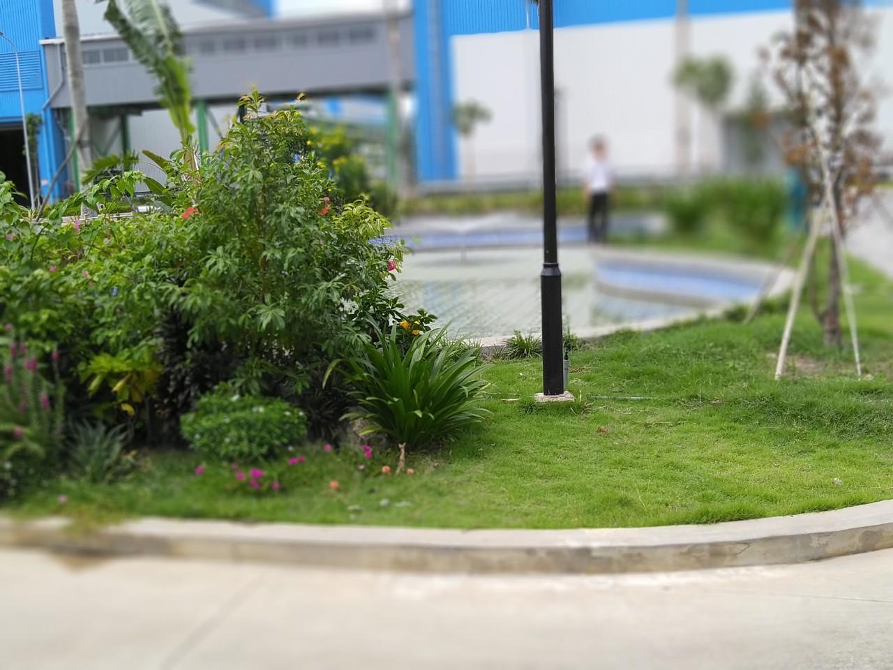 Dịch vụ cắt cỏ khu công nghiệp Việt Hương