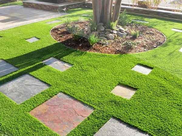 Dịch vụ trồng cỏ thảm
