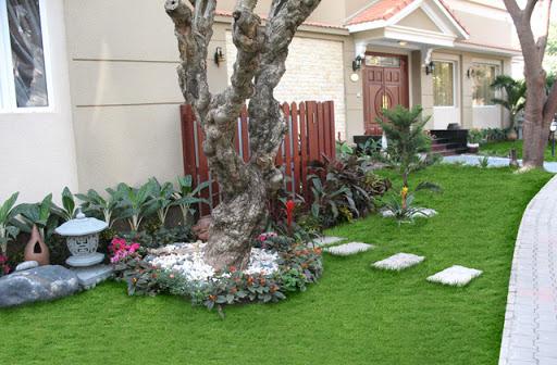 Công ty trồng cỏ thảm tại Phú Giáo Bình Dương