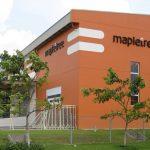 Dịch vụ chăm sóc cây xanh KCN Mapletree uy tín
