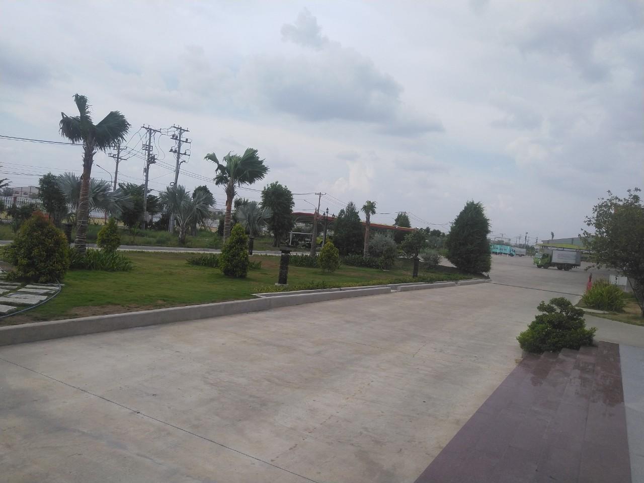 Công ty trồng cỏ cây xanh tại KCN An Tây