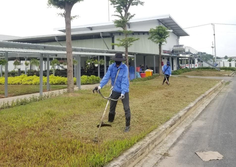 Dịch vụ cắt cỏ khu công nghiệp Đất Cuốc giá rẻ