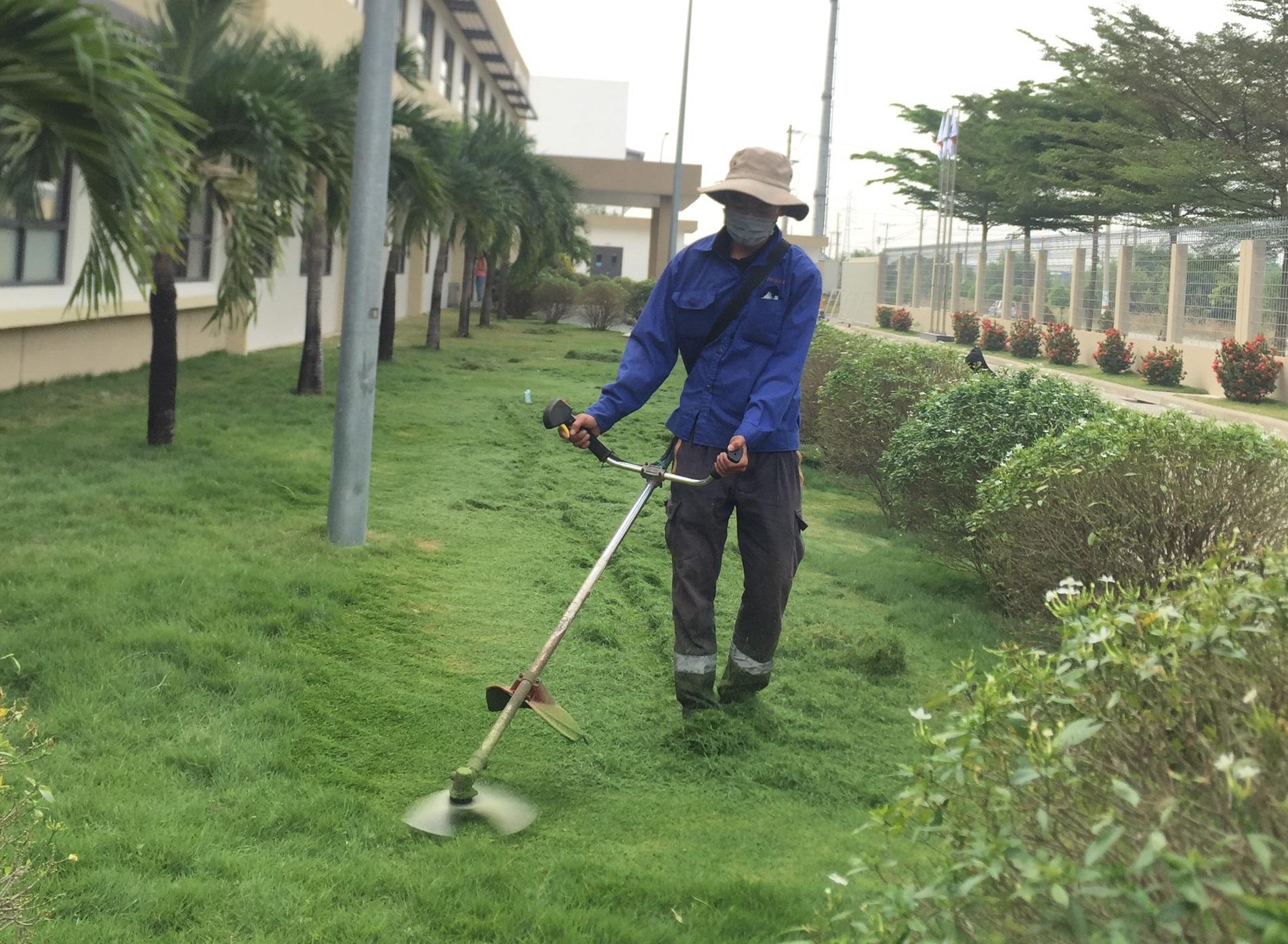 Thi công cắt cỏ tại kcn Bình Đường cùng Ngoại Thất Xanh