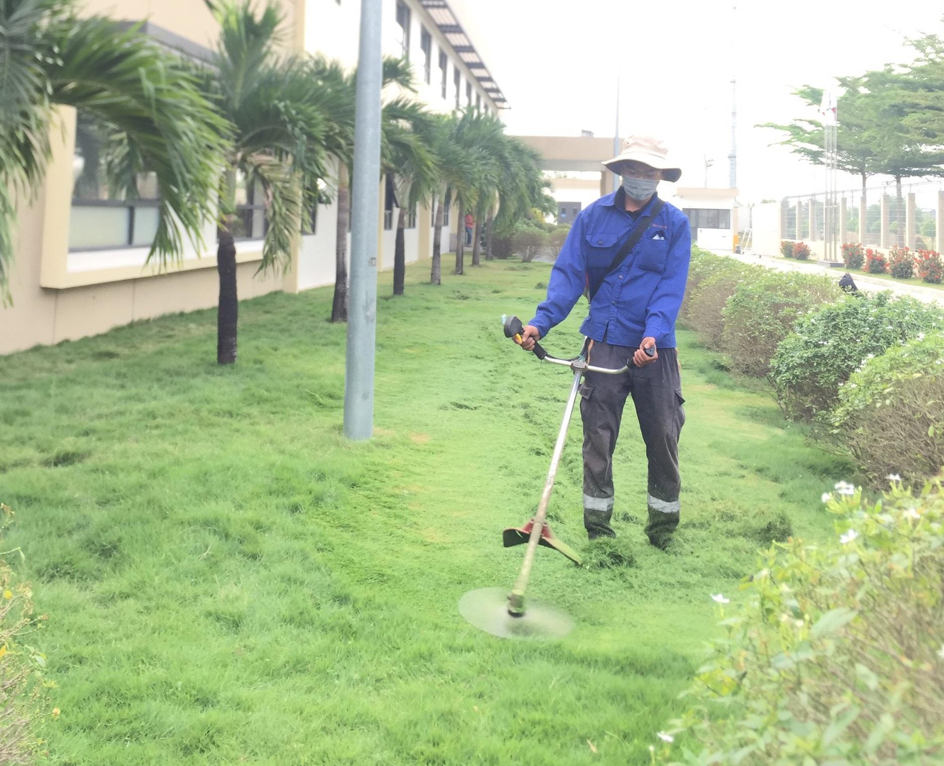 Thuê cắt cỏ tại khu công nghiệp Bình An