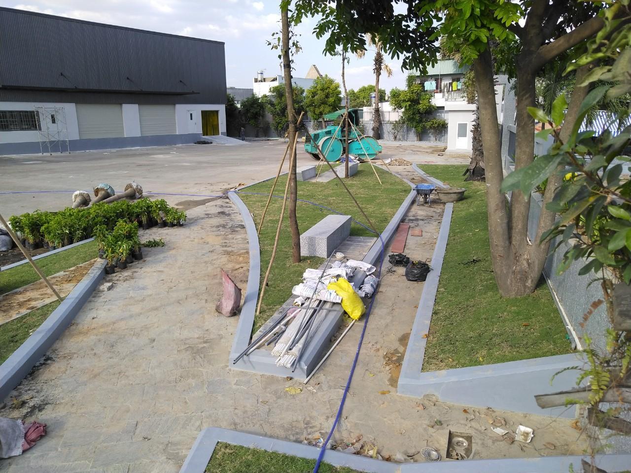 Ngoại Thất Xanh thực hiện trồng cỏ trồng cây xanh tại Tây Ninh