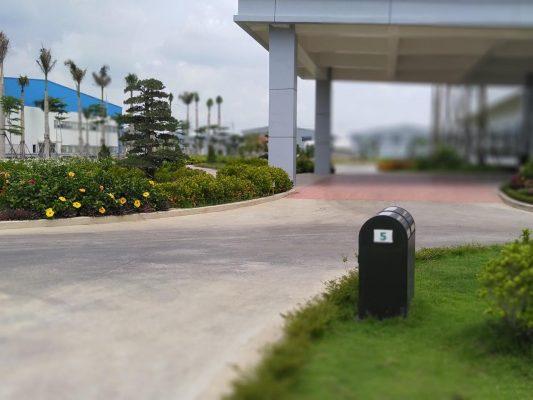 Dịch vụ trồng cỏ, cây xanh KCN Bình Phước uy tín