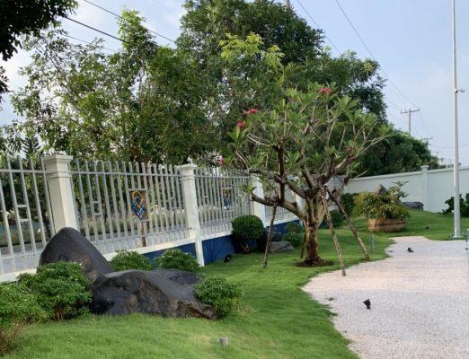 Trồng cỏ xanh cây xanh tại KCN Bình Lập